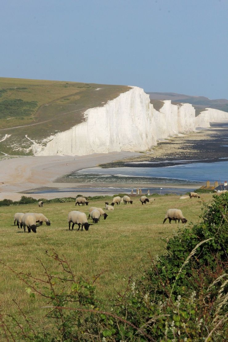 South Downs National Park.